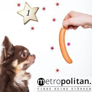 Adventskalender 2018 - Nummer 1 Salami für Vegetarier Hund mit Wurst