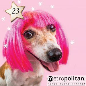 Adventskalender Nummer 23 WC-Bürste Hund mit Perücke