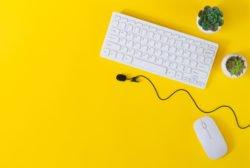 Tastatur Maus Online-Seminar Job-Hunting